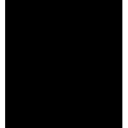 Sticker tête Corse
